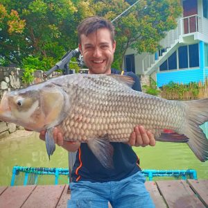 Big Fish In Phuket